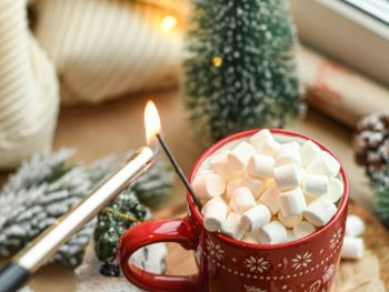 Protein Hot Chocolate + Peppermint Whipped Cream 3